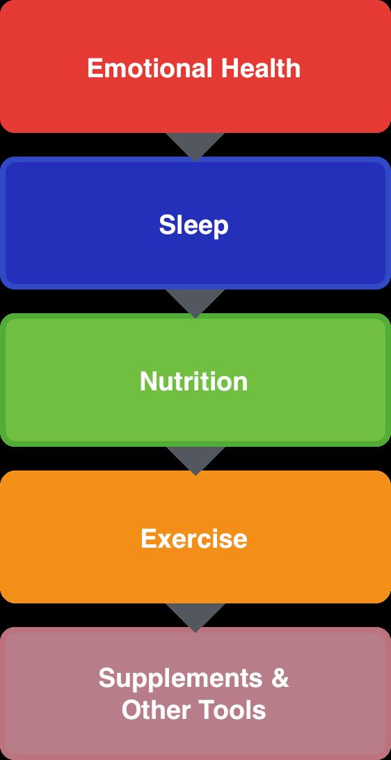 Levene Health Model