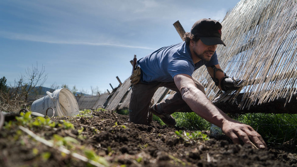 planting seeds in the garden. PHOTO: NATHAN NORBY