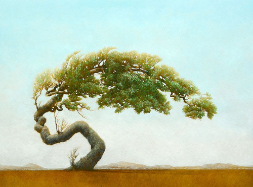 Robert Marchessault – Paintings (trees!)