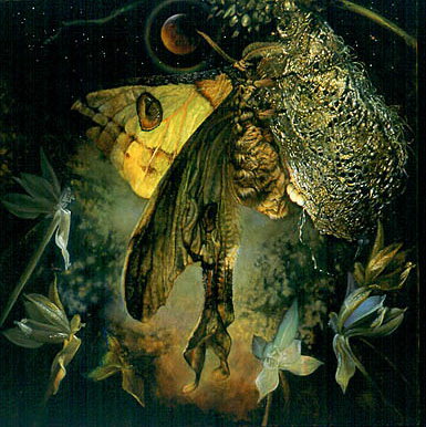 Saint Augustine in his Manichaean Phase with a Madagascar Moon Moth