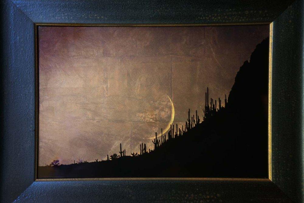 Moon Setting (Over Saguaros)