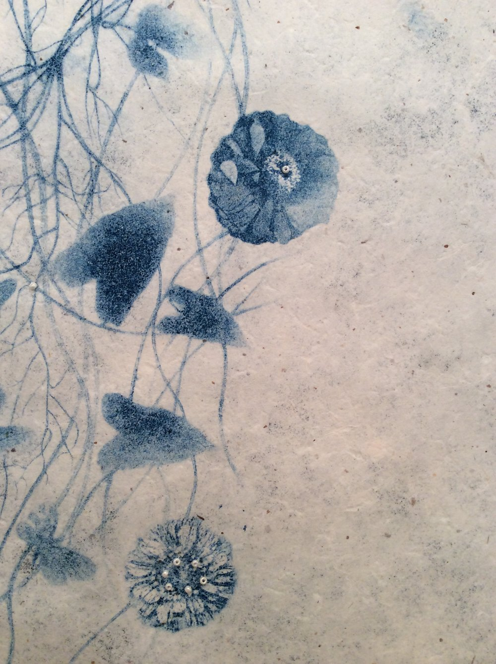 Anemone (detail)