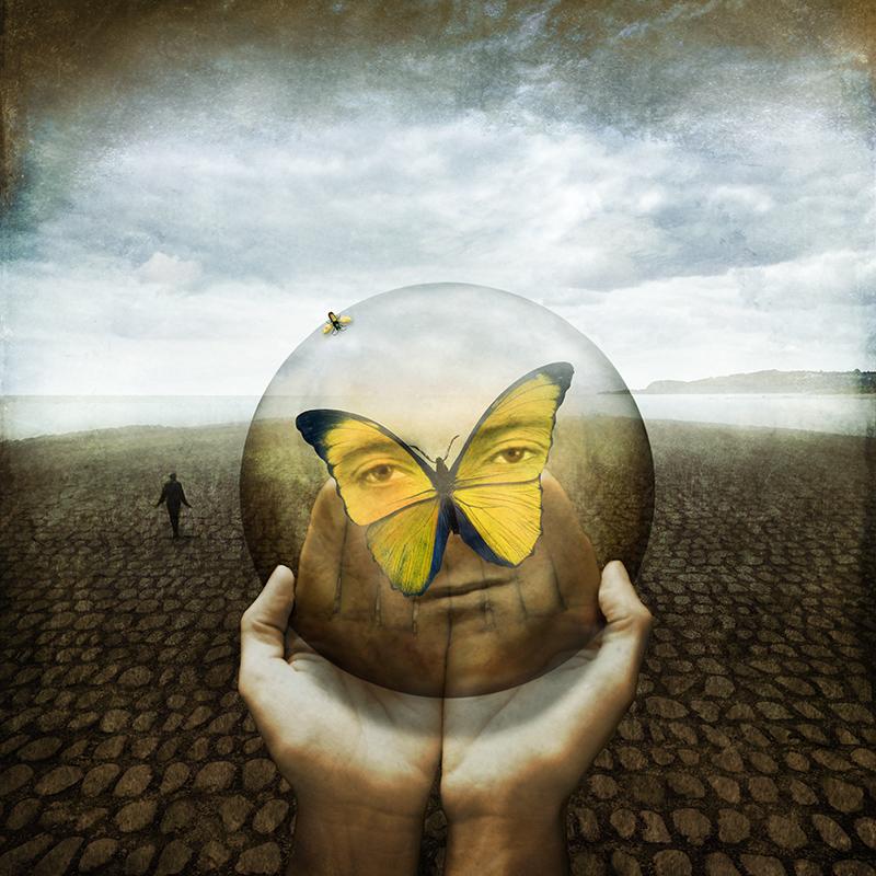 Self-portrait as a butterfly