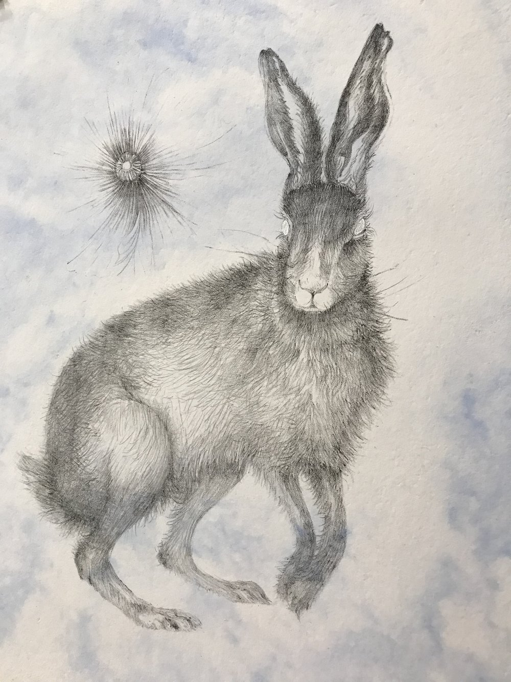 Hare (light), 2015, AP unique various, lithograph on pigmented handmade cotton paper, with pigment with silver pochoir, 13 58 x12.jpg