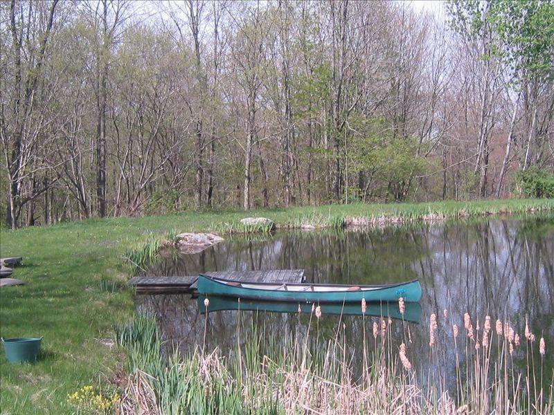 Feel free to swim, canoe, or fish