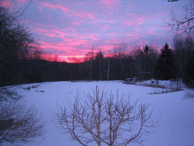 Sunrise over the pond