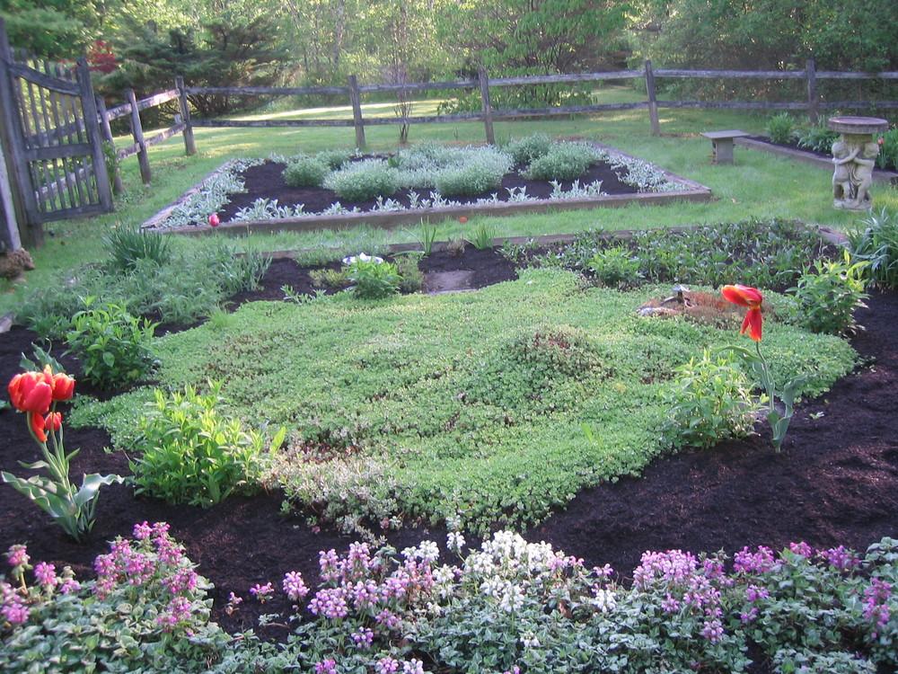Your garden in spring