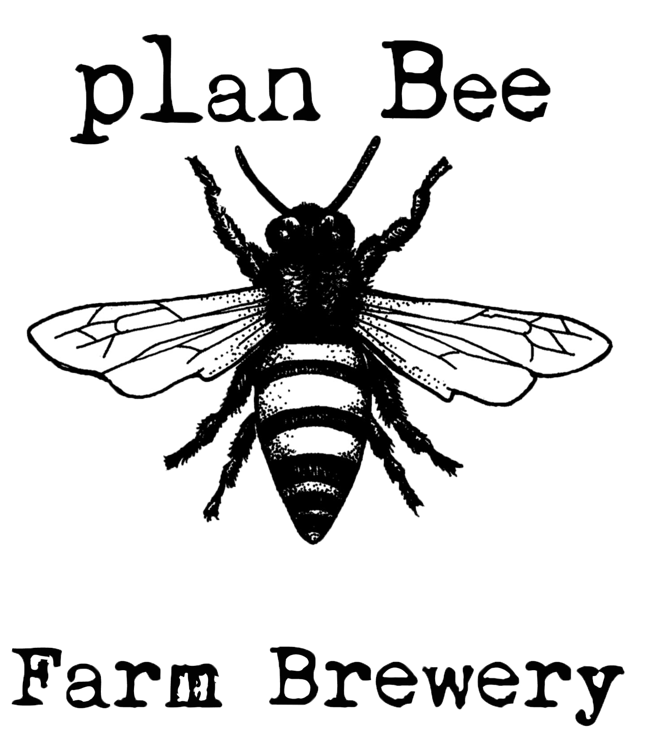 Honey bee business plan
