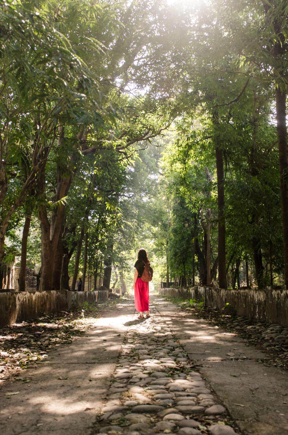 Rishikesh-Uttakarand-India-BeatlesAshram-AmyRolloPhoto-0542.jpg