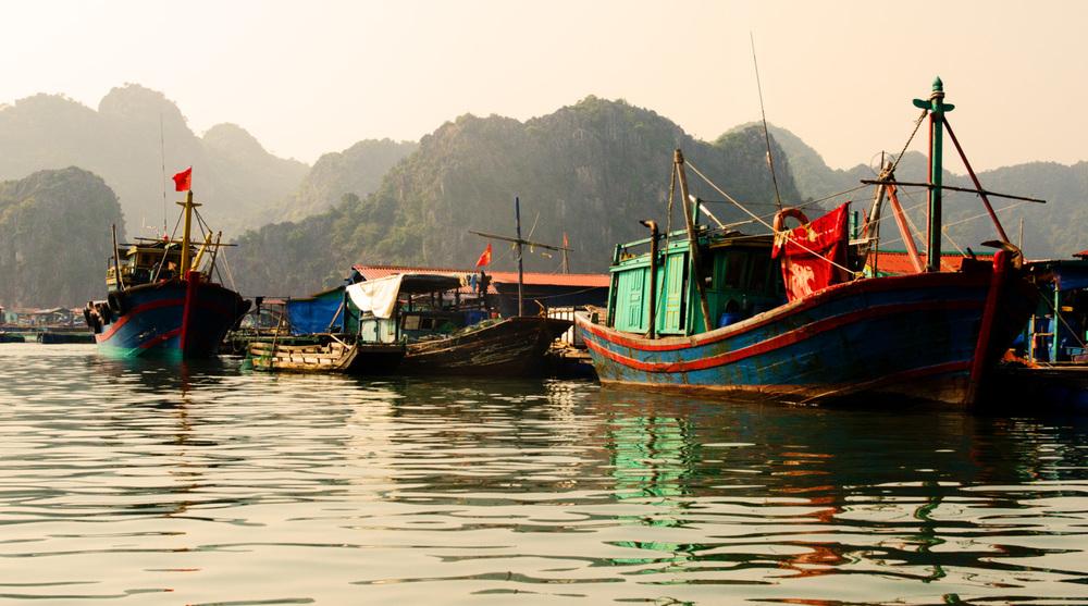 CatBaIsland-Vietnam-AmyRolloPhoto-165-Edit-Edit.jpg