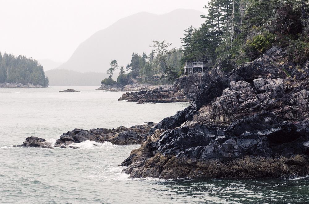 Tofino-BritishColumbia-Canada-AmyRolloPhoto-6828-Edit.jpg