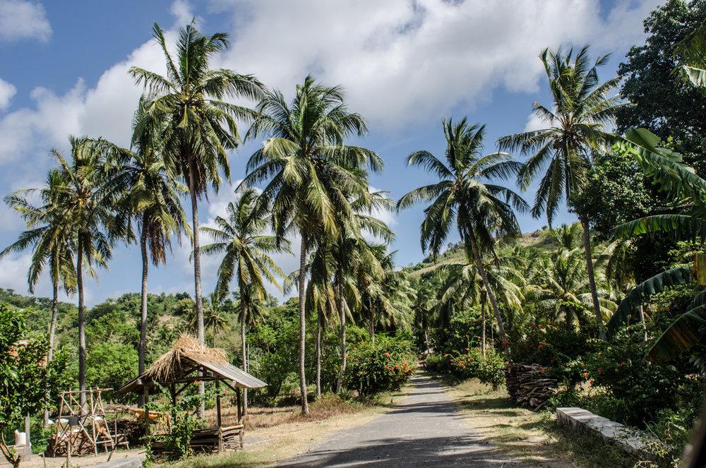 Kuta-Lombok-Indonesia-AmyRolloPhoto-3691.jpg