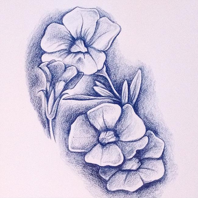 flowersketch