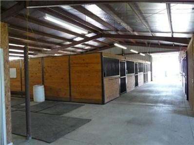 stalls-1.jpg