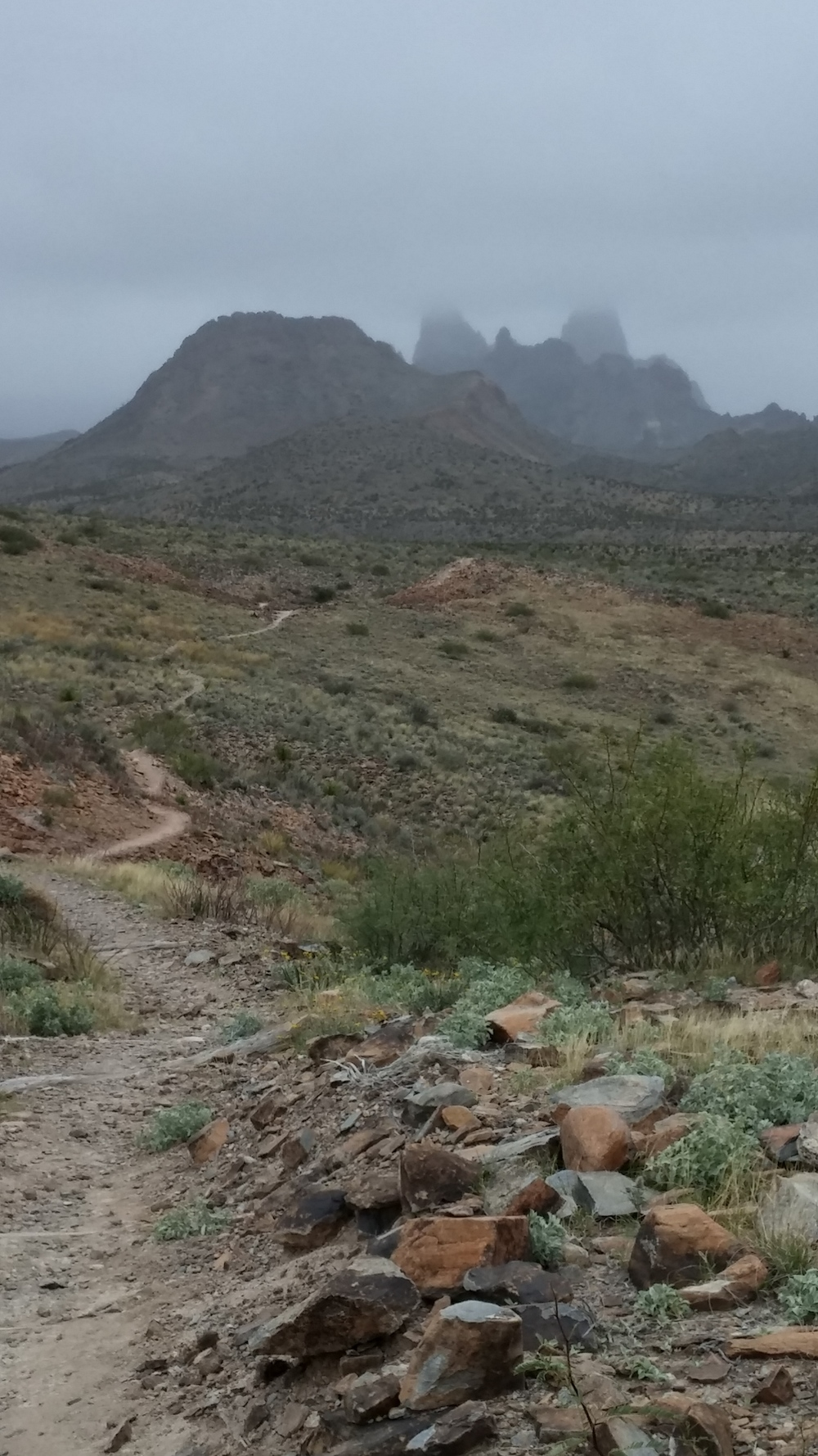 Mule Ears Trail