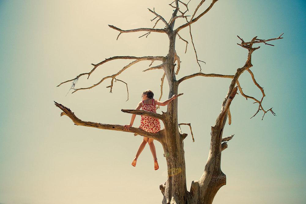 Смешная картинка мужик на дереве, одноклассники