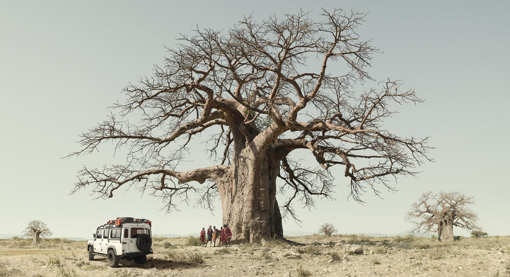 Defender_Baobab_FINAL.jpg