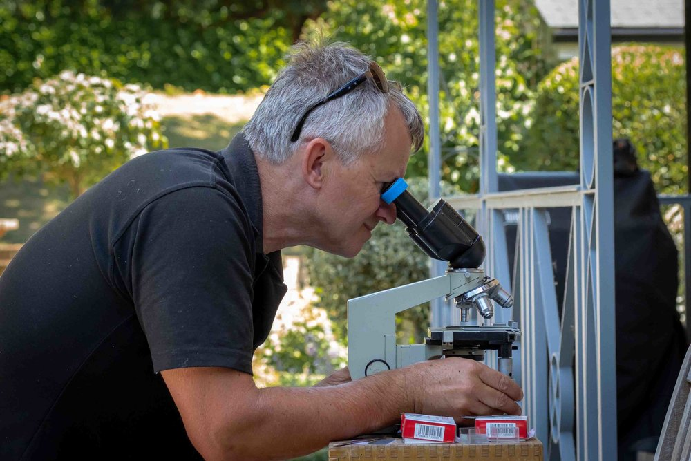 Microscope Analysis - For external parasites on up to 6 fish