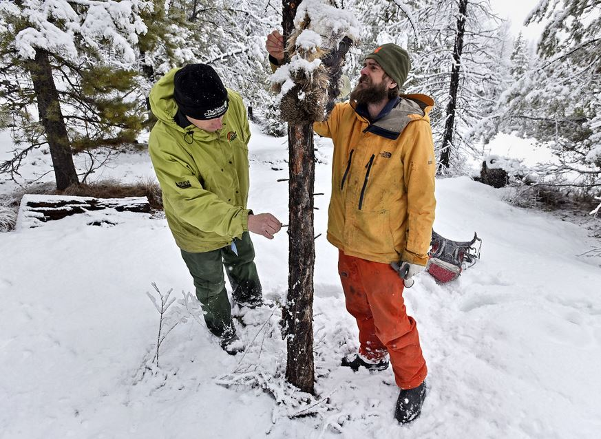 Steve Kloetzel, left, of The Nature Conservancy and Adam Lieberg, right, of Swan Valley Connections. Image: TOM BAUER/Missoulian.
