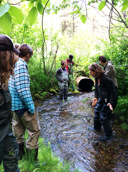 Instructor Andrea Stephens explains how fish move through culverts