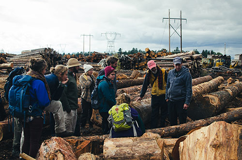 The Landscape and Livelihood students visit several lumber mills to learn about the logging industry firsthand. Here they are pictured at RBM Lumber in Columbia Falls. Image: FAITH BERNSTEIN