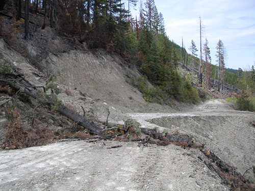 A badly eroded forest road on the Swan River State Forest which will be repaired as part of the Lower Swan Valley Road Restoration Project.
