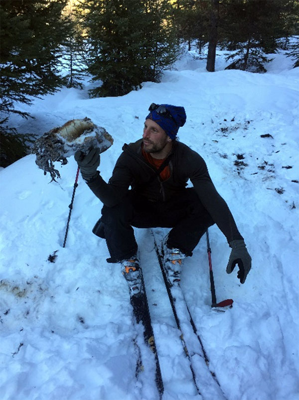 Photojournalist and tracking guru, David Moskowitz, holds black bear skull. A hungry wolverine led us to the carcass.