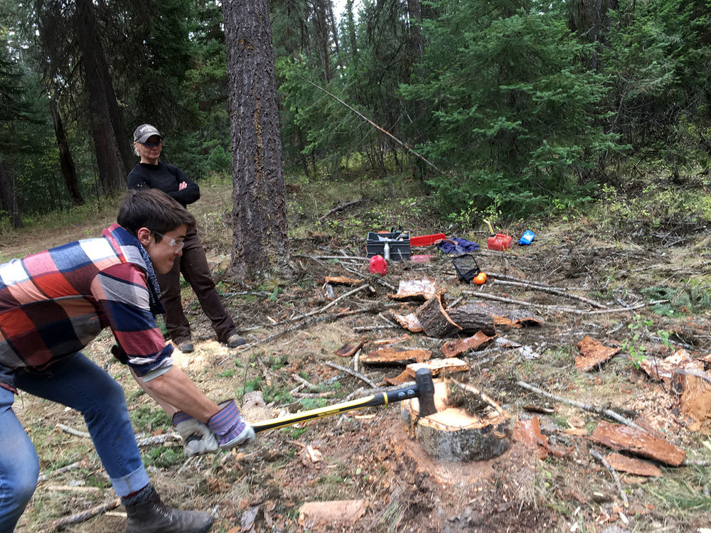 Sam splitting firewood