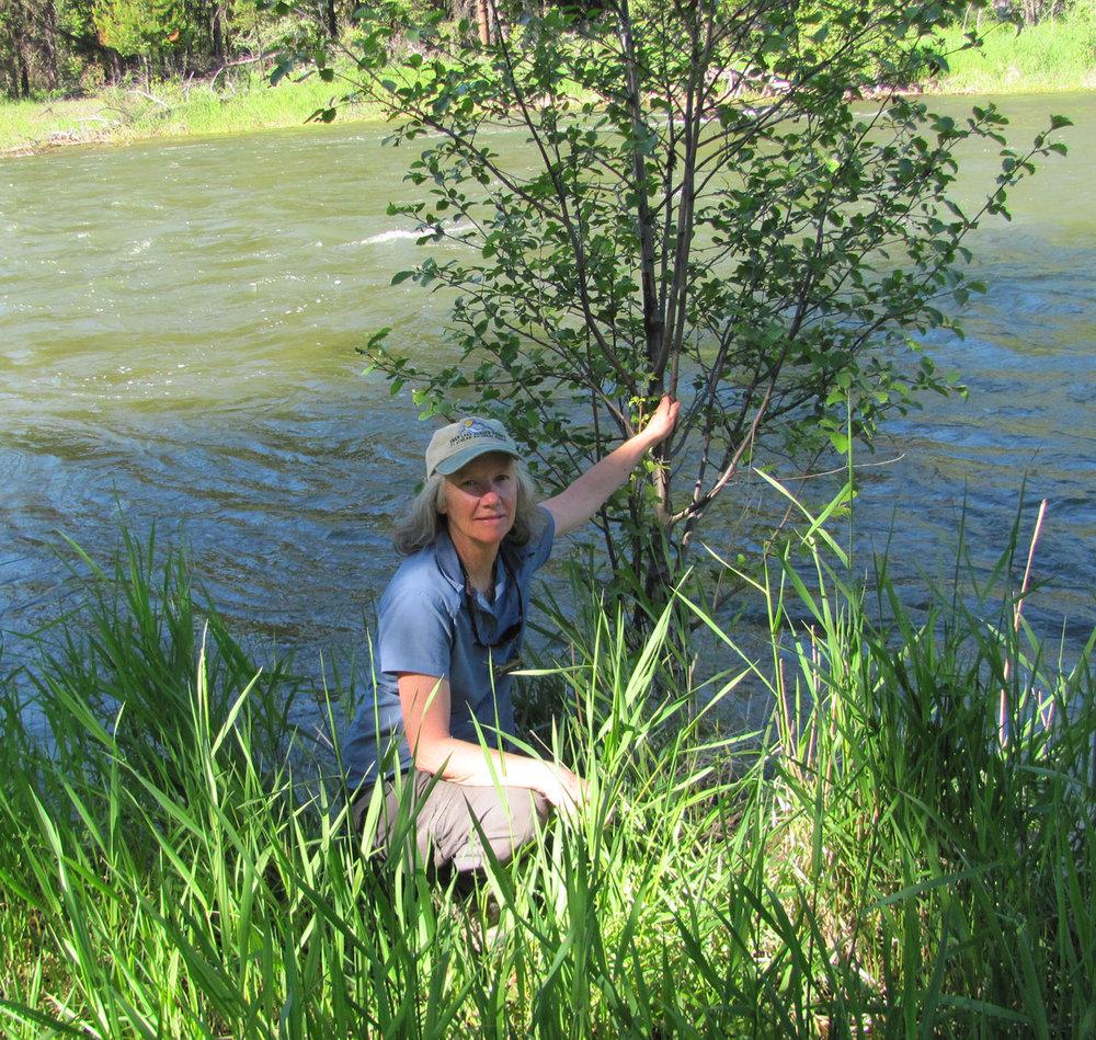 At-Swan-River.jpg