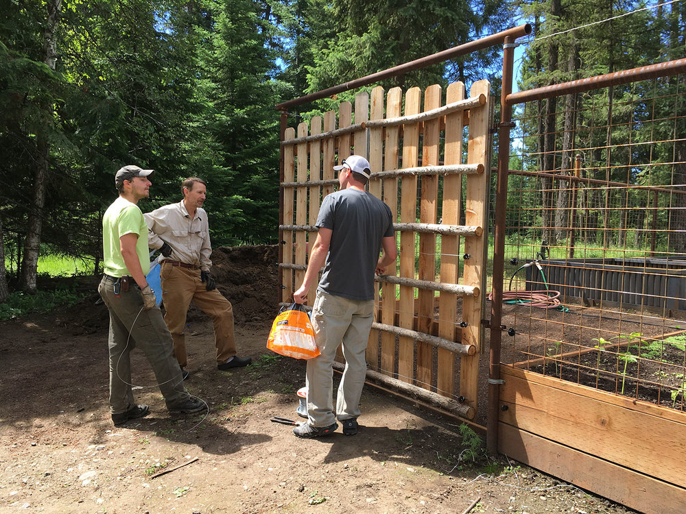 Electric bear fences are custom-built and adaptable to the particular needs of each site, and here Luke, Mike, and Chris explore the options for wiring the door. These fences are also extremely cost-effective investments that secure landowner attractants with practical methods, spare money required for expensive post-problem management, and save bears from needlessly losing their lives.