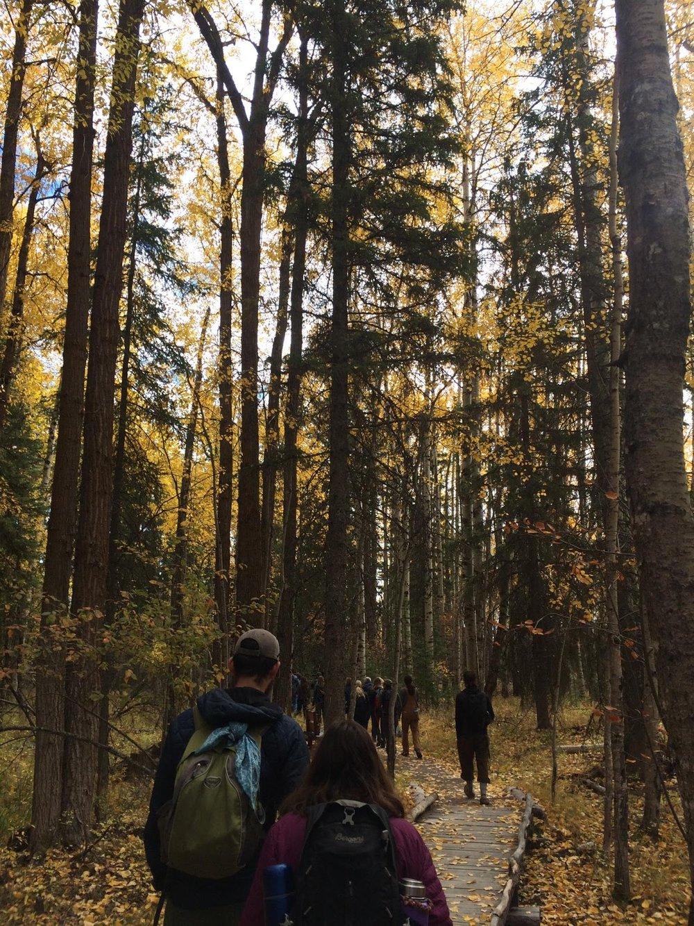 Walking the Whitefish Lake Institute Interpretive Nature Trail