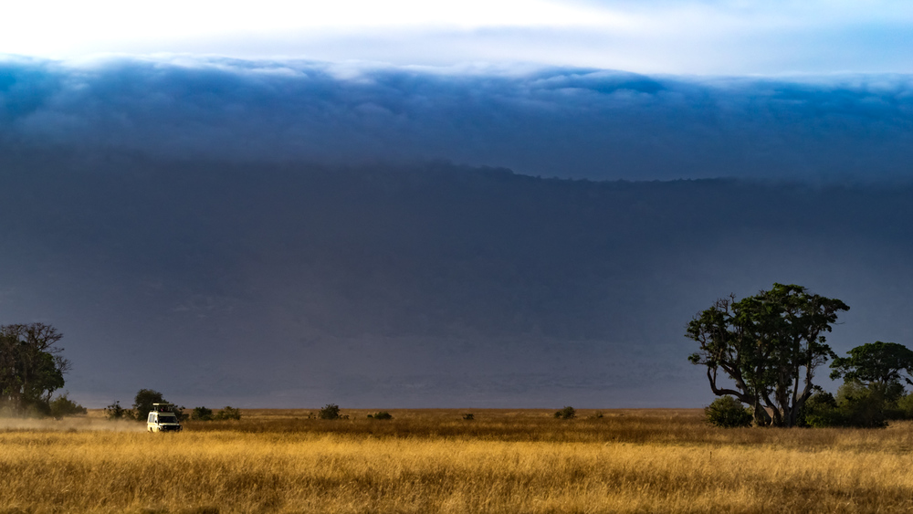 On Safari in Ngorongoro Crater