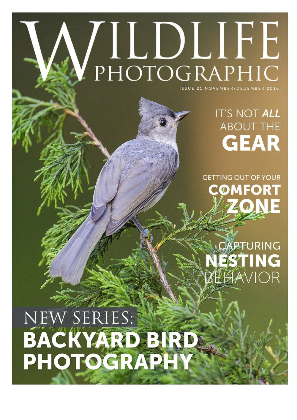 WP Cover Issue 21.jpg