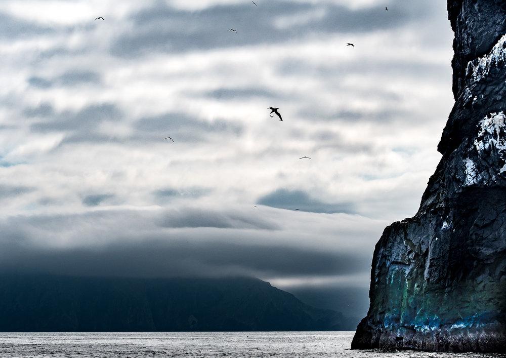 St Kilda -