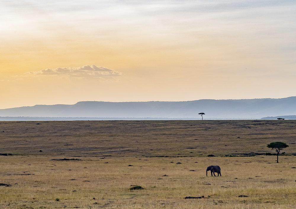 Tanzania -
