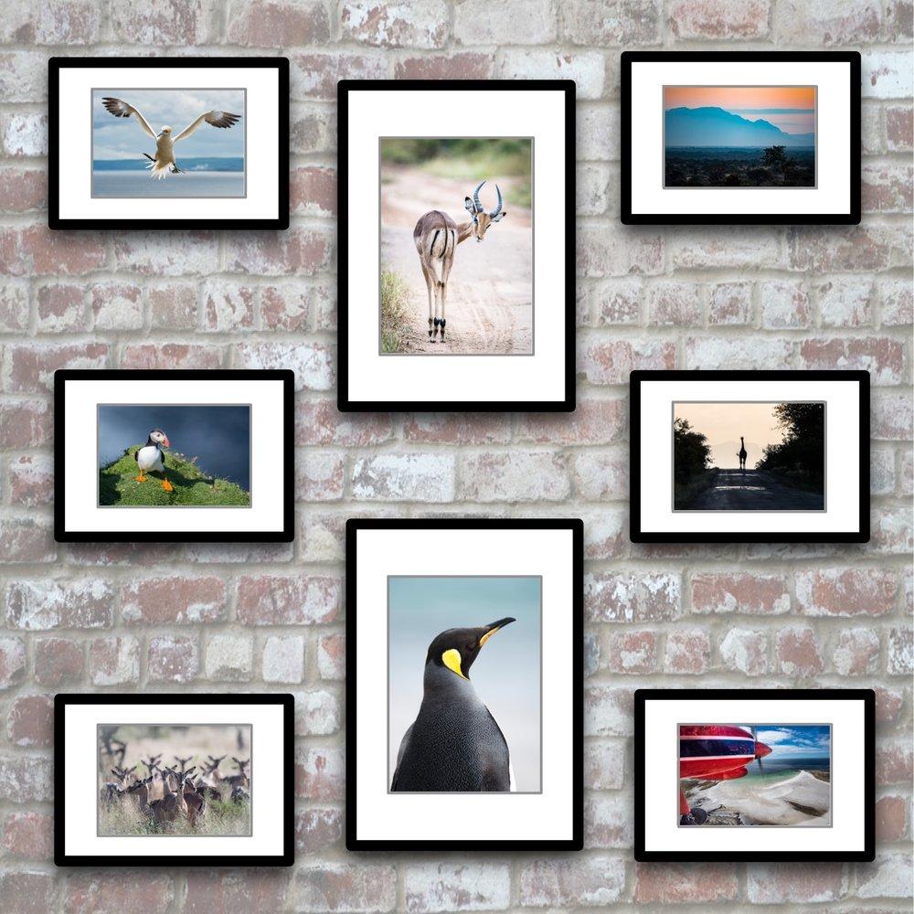 Galleries -