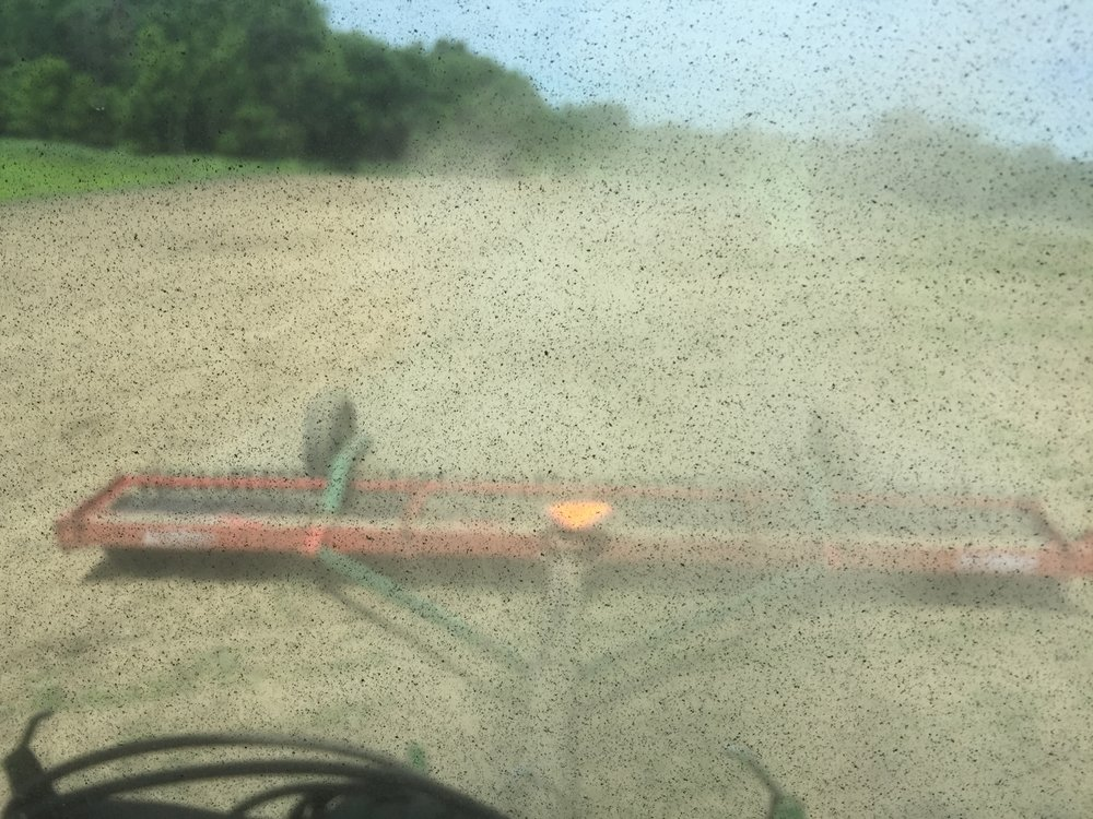 View of the cultipacker through the tractor rear window.