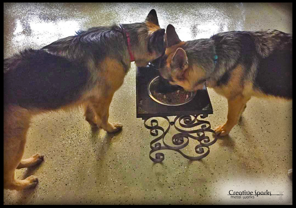Elevated Pet Feeder_12_Creative Sparks Metal Works_Gallery.jpg