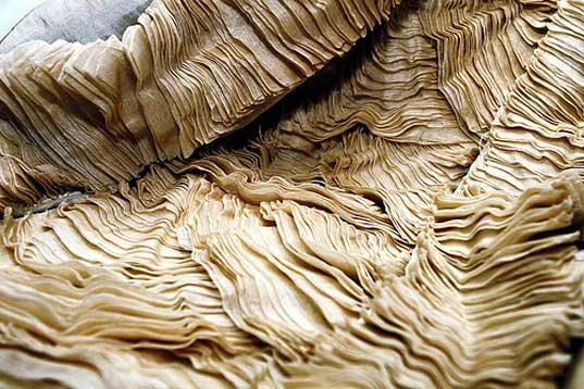 layered-pina-cloth.jpg