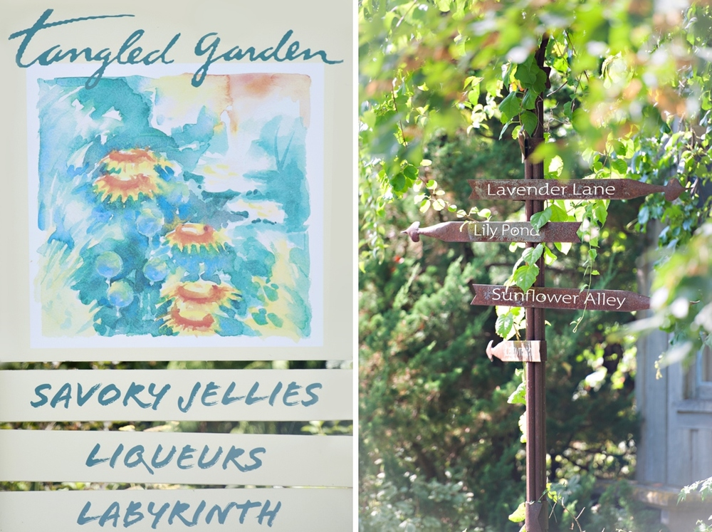 Tangled-Gardens-Wedding-Halifax-Elopement001.jpg