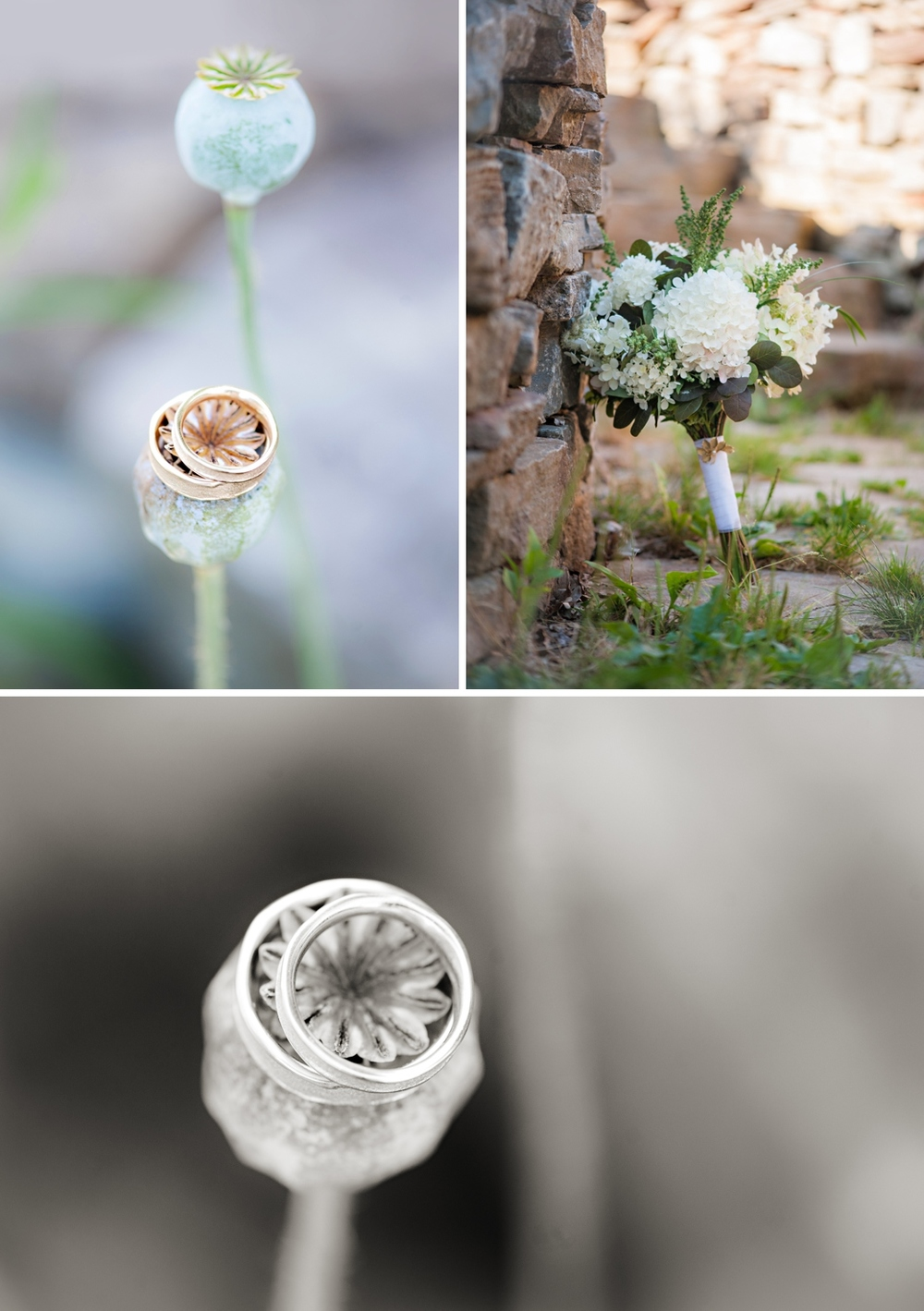 Tangled-Gardens-Wedding-Halifax-Elopement085.jpg
