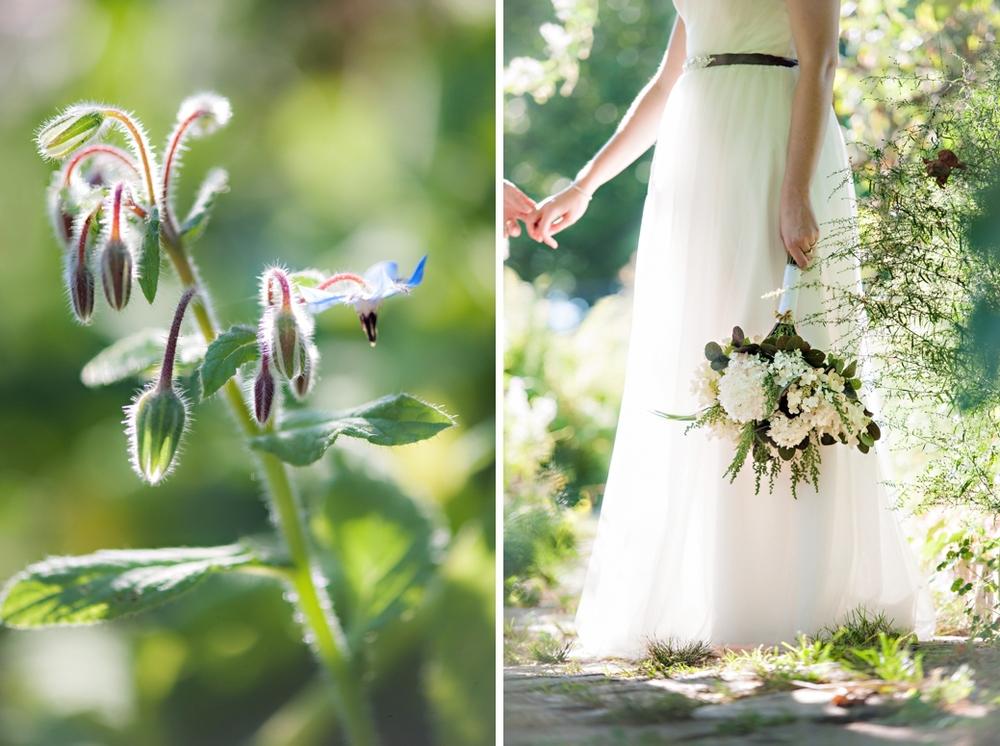 Tangled-Gardens-Wedding-Halifax-Elopement094.jpg