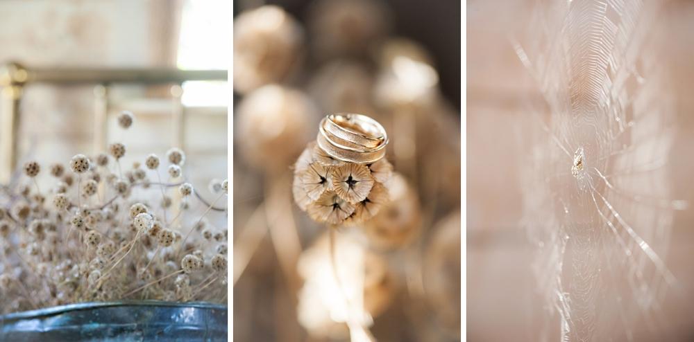 Tangled-Gardens-Wedding-Halifax-Elopement109.jpg