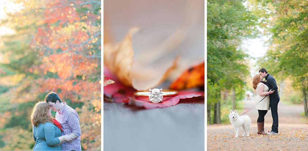 Halifax-Park-Engagement-Halifax-Engagment-Fall-Engagement-Photos2.jpg