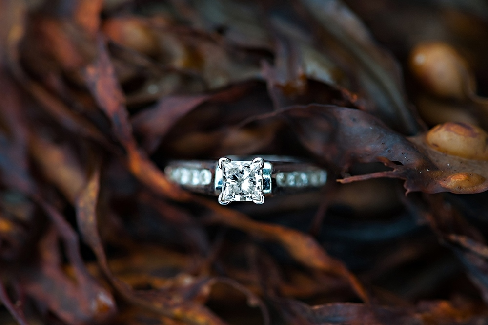 Nova-Scotia-Engagement-Photography_13.jpg