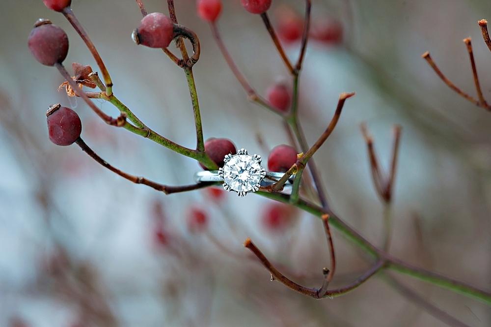 Winter-Engagement_42.jpg
