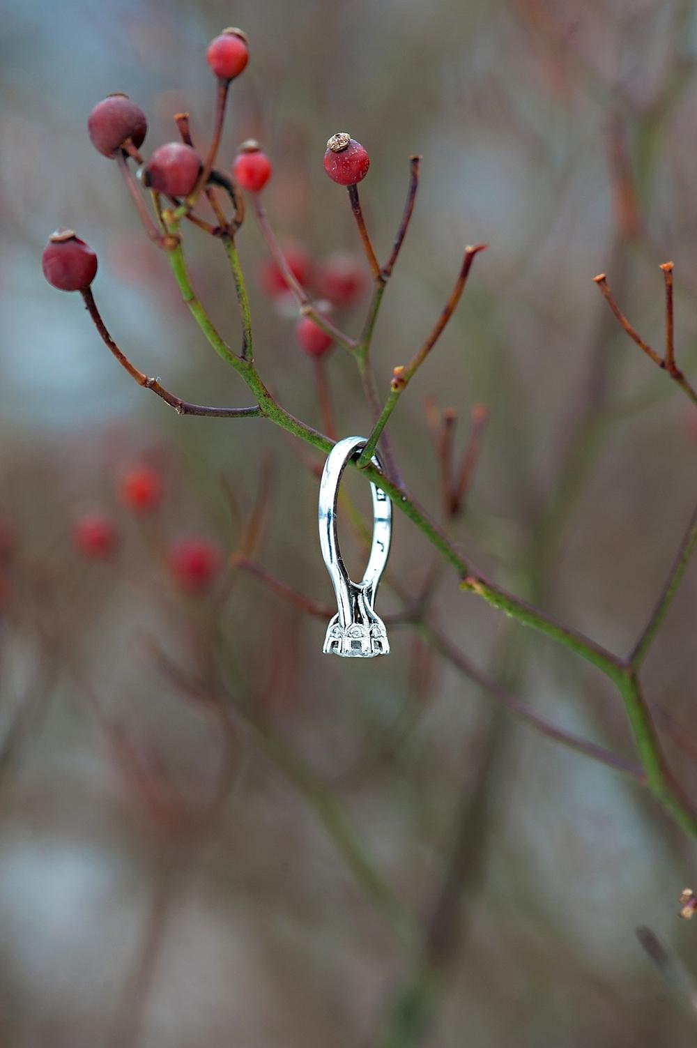 Winter-Engagement_44.jpg