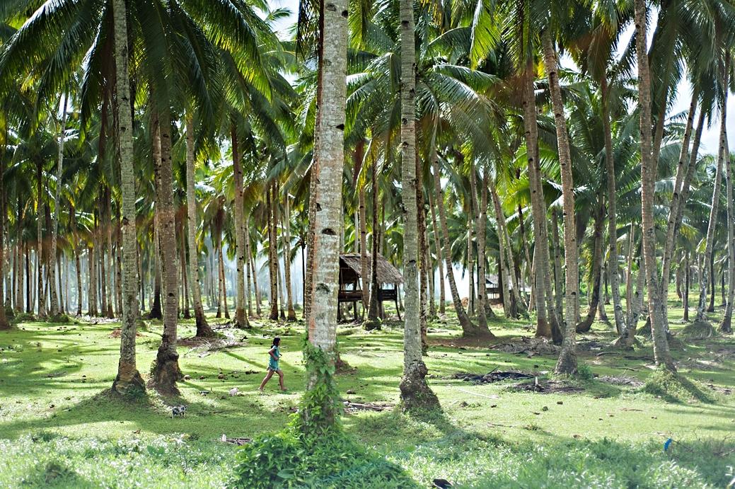 Siargao Island 2014_016