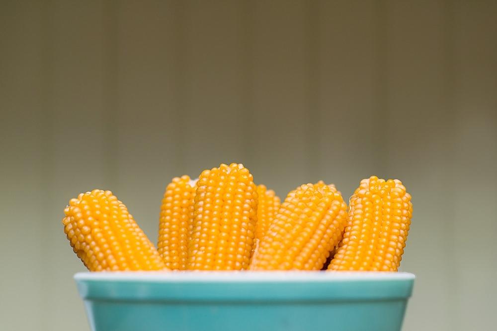 Popcorn-20140008.jpg