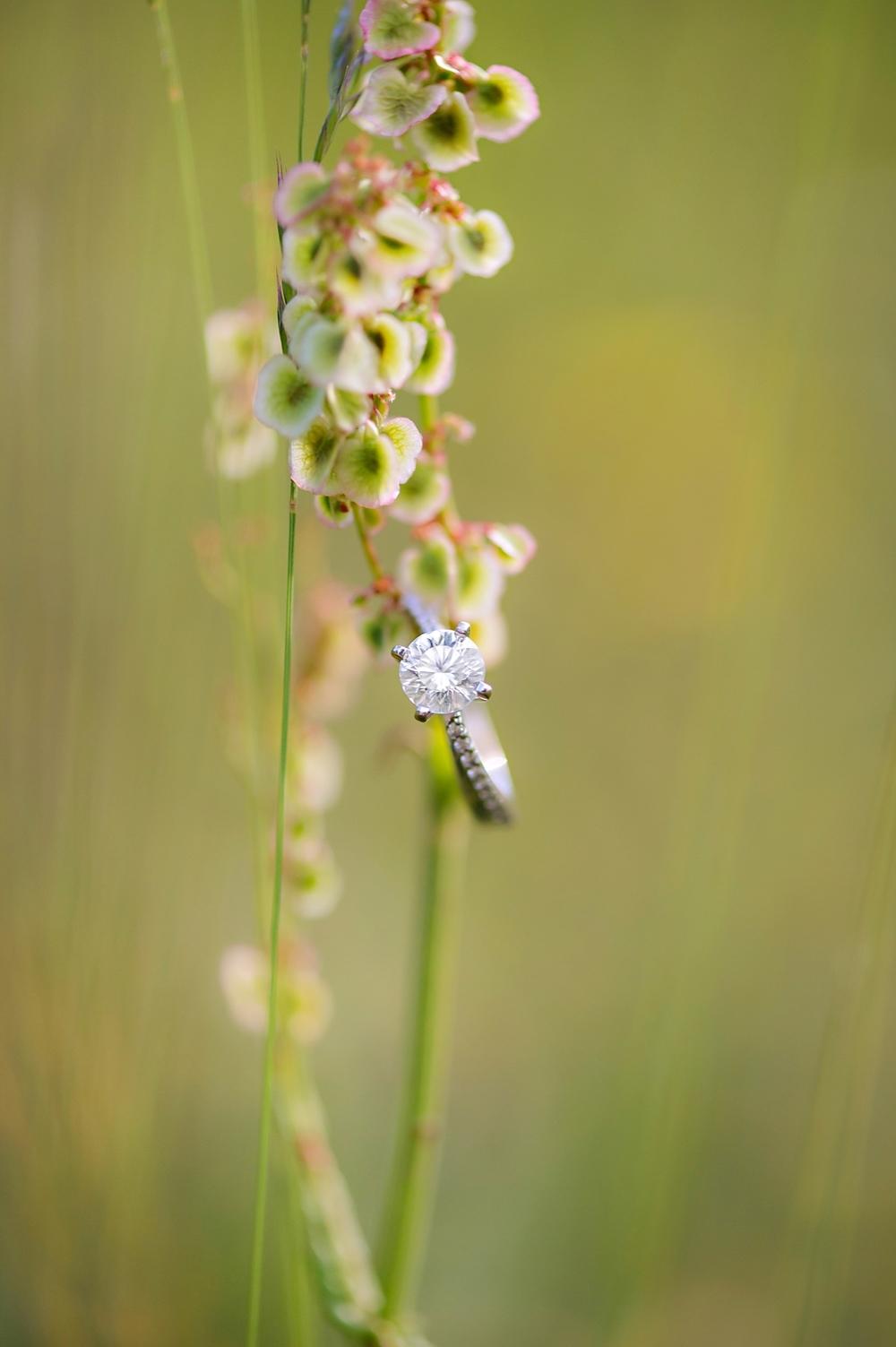 Kyla-Mark-Nova-Scotia-Enagement-Photography-Candace-Berry-Photography-2014029.jpg
